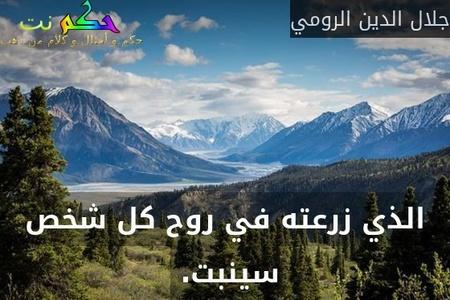 الذي زرعته في روح كل شخص سينبت. -جلال الدين الرومي