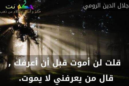 قلت لن أموت قبل أن أعرفك , قال من يعرفني لا يموت. -جلال الدين الرومي