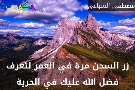 زر السجن مرة في العمر لتعرف فضل الله عليك في الحرية-مصطفى السباعي