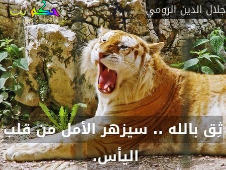 ثِق بالله .. سيزهر الأمل من قلب اليأس. -جلال الدين الرومي