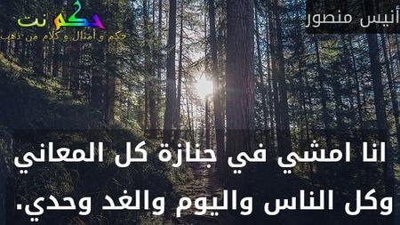 انا امشي في جنازة كل المعاني وكل الناس واليوم والغد وحدي. -أنيس منصور