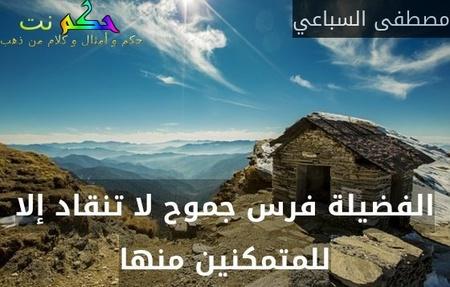 الفضيلة فرس جموح لا تنقاد إلا للمتمكنين منها-مصطفى السباعي