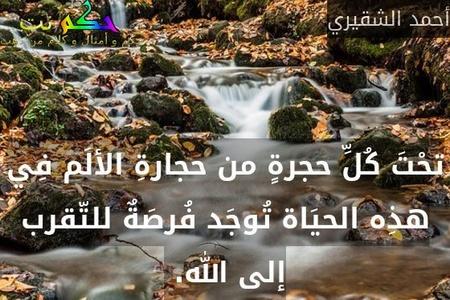 تحْتَ كُلِّ حجرةٍ من حجارةِ الألَم فِي هذِه الحيَاة تُوجَد فُرصَةٌ للتّقرب إلى الله. -أحمد الشقيري