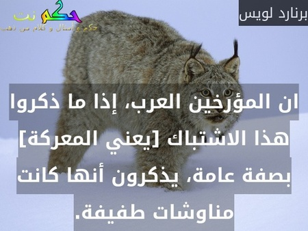 ان المؤرخين العرب، إذا ما ذكروا هذا الاشتباك [يعني المعركة] بصفة عامة، يذكرون أنها كانت مناوشات طفيفة.-برنارد لويس