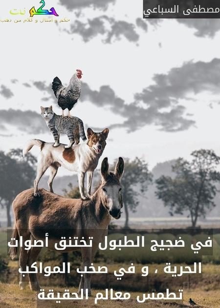 في ضجيج الطبول تختنق أصوات الحرية ، و في صخب المواكب تطمس معالم الحقيقة-مصطفى السباعي