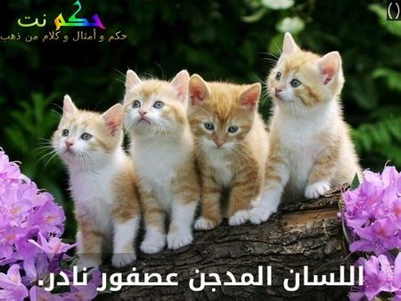 اللسان المستأنس طائر نادر .- ()