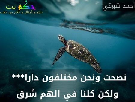 نصحت ونحن مختلفون دارا***  ولكن كلنا في الهم شرق-أحمد شوقي