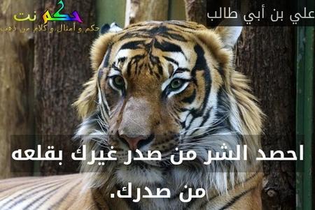 احصد الشر من صدر غيرك بقلعه من صدرك.-علي بن أبي طالب