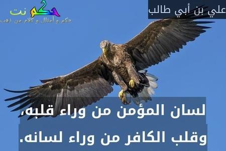لسان المؤمن من وراء قلبه، وقلب الكافر من وراء لسانه.-علي بن أبي طالب