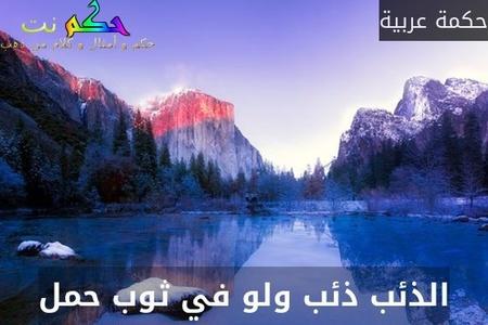 الذئب ذئب ولو في ثوب حمل-حكمة عربية