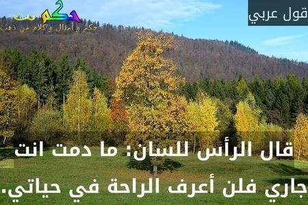 قال الرأس للسان: ما دمت انت جاري فلن أعرف الراحة في حياتي.-قول عربي