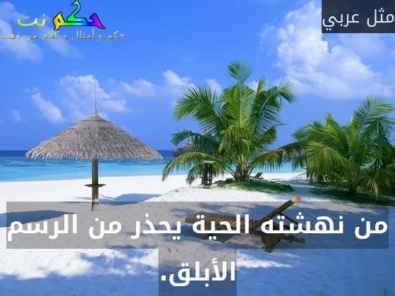 من نهشته الحية يحذر من الرسم الأبلق.-مثل عربي