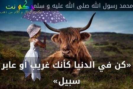 «كن في الدنيا كأنك غريب أو عابر سبيل»-محمد رسول الله صلى الله عليه و سلم