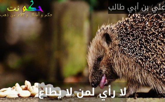 لا رأي لمن لا يطاع-علي بن أبي طالب