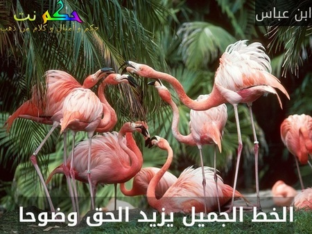 الخط الجميل يزيد الحق وضوحا-ابن عباس